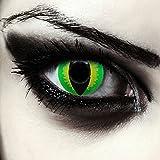 Grüne farbige Drachenaugen Katzenaugen Kontaktlinsen für Halloween Kostüm Model: