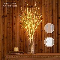 Hairui Rama de Sauce Iluminada de Abedul Blanco Decoración con Luces LED 80CM 100LED Funciona a Pilas Rama Luces Ramita para la del Hogar para Uso en Interior y Exterior Paquete de 2 (Sin jarrón)