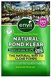 Envii Natural Pond Klear - Trattamento di Pulizia per Laghi Naturali, elimina acque Verdi (Tratta 50.000 Litri)