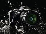 Olympus E-M5 MarkII - Cámara Evil de 16.1 MP (Pantalla táctil 3', estabilizador óptico, grabación de vídeo Full HD), Color Negro - Kit con Objetivo M.Zuiko EZ 14-150 mm f4 (Importado)