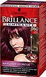 Brillance Intensiv-Color-Creme 860 Ultraviolett Luminance, 3er Pack (3 x 143 ml)