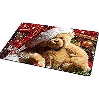 LanChuon Buon Natale Decor Zerbino, 40x60cm antiscivolo ingresso Tappeto, tappetini, scarpe raschietto, Benvenuto Tappeto, divertenti Zerbini