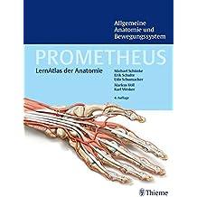 PROMETHEUS Allgemeine Anatomie und Bewegungssystem (LernAtlas der Anatomie) (Prometheus: LernAtlas der Anatomie)