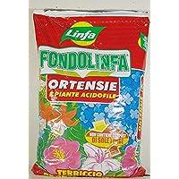 fondolinfa hortensias Sustrato Pronto al uso para hortensias y todas las plantas ACIDOFILE de género unidades de 10l