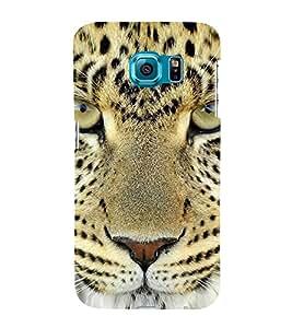 Fuson Designer Back Case Cover for Samsung Galaxy S6 Edge :: Samsung Galaxy S6 Edge G925 :: Samsung Galaxy S6 Edge G925I G9250 G925A G925F G925Fq G925K G925L G925S G925T (Cheetah Cheetah Eyes Fiery Look Spots Cheetah Face)