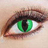 aricona Farblinsen Farbige Katzenaugen Kontaktlinsen Green Cat -Deckende Jahreslinsen für dunkle und helle Augenfarben ohne Stärke,Farblinsen für Karneval,Fasching,Motto-Partys und Halloween Kostüme