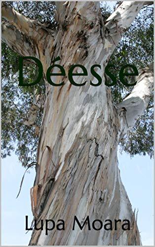 Couverture du livre Déesse