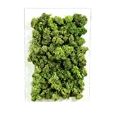 Yw-Grass ball Cornice di Muschio di Fiore Artificiale, Decorazione di Parete di pianta Verde Decorazione di Parete di edera Artificiale Decorazione di Giardino di Nozze 3D,Darkgreen,20cm×30cm