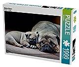 CALVENDO Puzzle Meine Mama 1000 Teile Lege-Größe 64 x 48 cm Foto-Puzzle Bild von Ole Dodeck (CALVENDO Tiere)