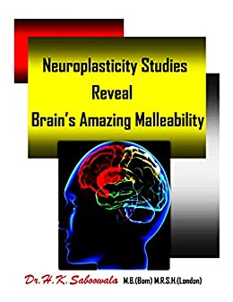 Neuroplasticity studies reveal brains amazing malleability neuroplasticity studies reveal brains amazing malleability neurons that fire together wire together fandeluxe Gallery