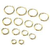 PiercingJ Paar Unisex 8-20mm Edelstahl Hoop Creolen Hinged Huggie Helix Tragus Ohrring Ohrpiercing Silber Gold 18G (Gold Set#2, 08-20mm)