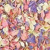 Picture Of Natural Biodegradable Delphinium Wedding Confetti - 26 Colours Available (Pastel Mix, 1 Litre)