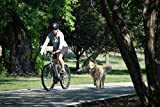 Bicicletas Ego E - Best Reviews Guide