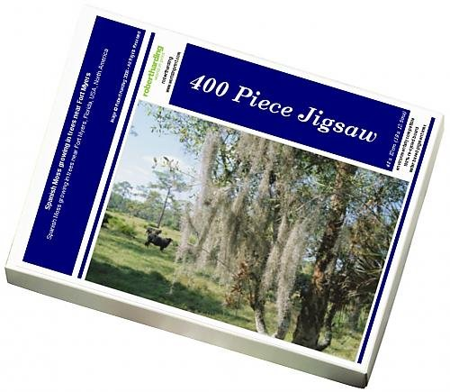 photo-jigsaw-puzzle-of-spanish-moss-growing-in-trees-near-fort-myers
