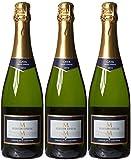 Marques de la Concordia Seleccion Especial Brut Wine 75 cl  (Case of 3)
