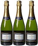 Product Image of Marques de la Concordia Seleccion Especial Brut Wine, 75 cl...