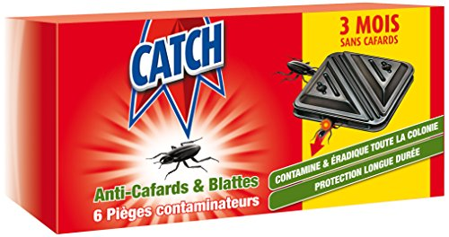 catch-set-de-6-contaminateurs-anti-cafards