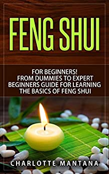 feng shui for beginners from dummies to expert beginners guide for learning the basics of feng. Black Bedroom Furniture Sets. Home Design Ideas