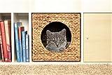 Ikea Kallax Expedit Katzenkorb 33 x 33 x 33 cm Natur Korb aus Wasserhyazinthe Tierkorb Tierhöhle Katzenhöhle Katzenbox Flechtkorb klappbar und sehr stabil ideal für kleine Hunde und Katzen