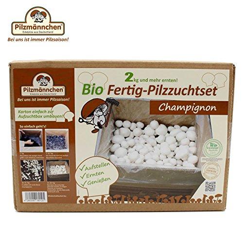 Bio Fertig-Pilzzuchtset Champignon klein