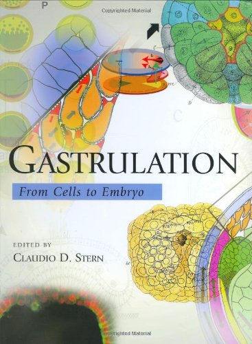 Gastrulation: From Cells to Embryo