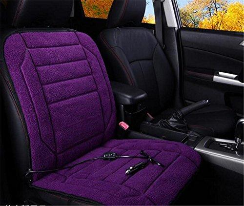 GEARS PANDA Auto Heizkissen Plüsch 12V 24V anit-Rutsch Winter Hot Pad Single Seat , C Feuer Lkw-bett