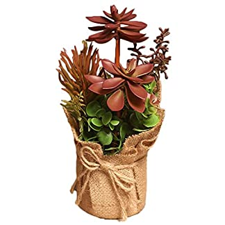 Outflower Suculentas de simulación Simulación de Plantas estilo pastoral pequeño bonsai pote cáñamo plantas de interior salón decoración de las mesas Simulación de la decoración vegetal,Rojo,25*14cm