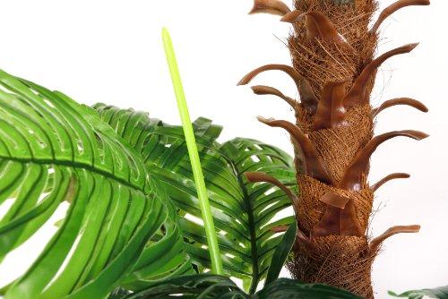 cycuspalme 1 50 m ohne topf kunstpalme zimmerpflanzen. Black Bedroom Furniture Sets. Home Design Ideas