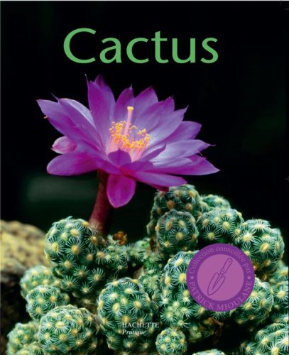 Cactus par  Franz Becherer