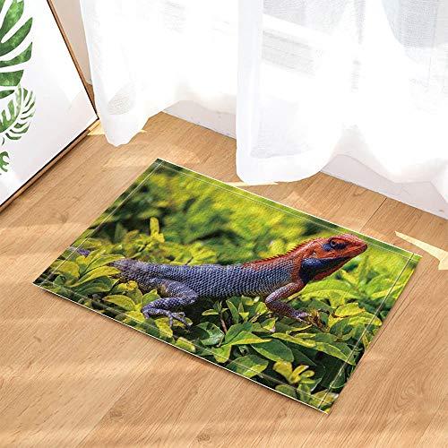ZHWL6688 Safari-Dekor, Wild Animal Lizard liegend auf grünen Blättern Bad Teppiche Tür Badezimmertür Printing Küche Badezimmer Matten Zubehör Taupe Lizard