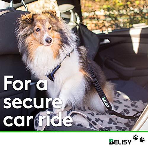 BELISY Hunde-Sicherheits-Gurt fürs Auto - 2