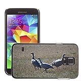 Grand Phone Cases Bild Hart Handy Schwarz Schutz Case Cover Schale Etui//M00141005 Cape Barren Gänse Gänse Tier//Samsung Galaxy S5 S V SV i9600 (Not Fits S5 ACTIVE)