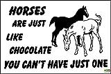 Witziges Schild Pferde wie Schokolade nicht haben können 1Weihnachtsgeschenk 4Tierliebhaber–1,2mm starrer Kunststoff 300mm x 200mm x 200mm