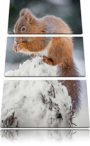 piccolo-scoiattolo-immagine-inverno-3-pezzi-picture-tela-120x80-in-su-tela-xxl-enormi-immagini-compl