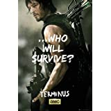 Póster The Walking Dead - Daryl Survive - cartel económico, póster XXL