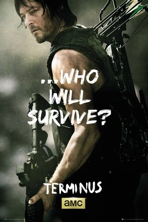 Póster The Walking Dead - Daryl Survive - cartel