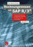 Rechnungswesen mit Sap R