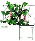 Vigor 86020 Rete Plastica P/Rampicanti Rotolo, 50 mt, 200 cm