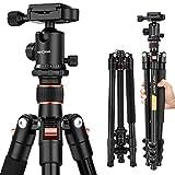 K&F Concept® TM2324 Reisestativ Kamera Stativ Kamerastativ für Canon Nikon Sony inkl. Kugelkopf Schnellwechselplatte und Stativtasche
