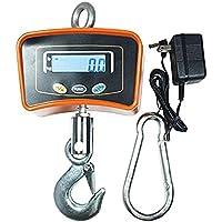 Denshine Peso escala 500 kg/1100 Crane báscula Digital báscula para colgar Industrial de alta resistencia