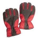 Accessoryo - Herren Gepolstert Pro-Klima Skimode Handschuhe In Rot In Der Größe Groß / Extra Große