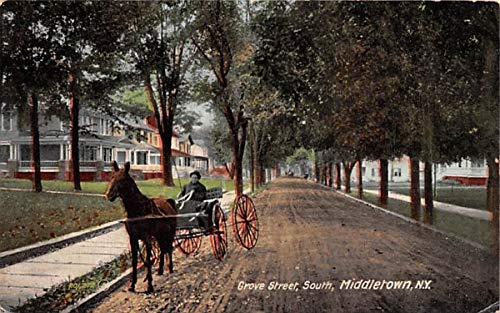 Grove Street Middletown, New York Postcard