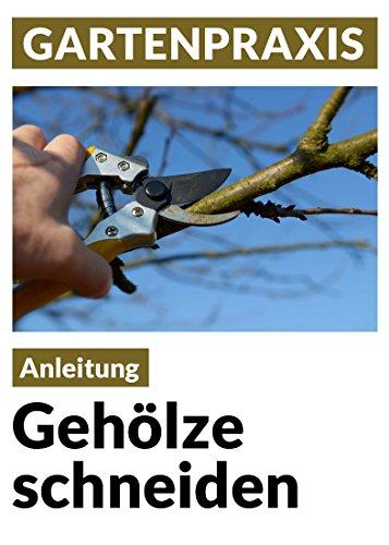 geholze-schneiden-obstbaume-laub-und-ziergeholze-pflege-instandhaltung-verjungung-form-und-erziehung