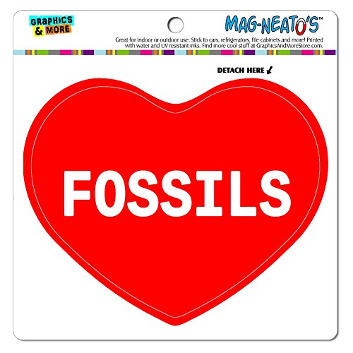 Price comparison product image MAG-NEATO'S(TM) Car Refrigerator Vinyl Magnet I Love Heart Sports Hobbies F-G - Fossils