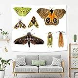 BEIVIVI Wandteppich mit Buntem Kunstdesign, Amazon Trail Ökotourismus, Wald, Polyester, für Schlafzimmer, Wohnzimmer, Schlafsaal 60 * 40in Color11