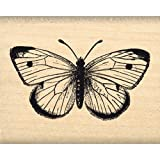 florilèges Design fc114005Stempel Scrapbooking Schönes Schmetterling Beige 4x 5x 2,5cm
