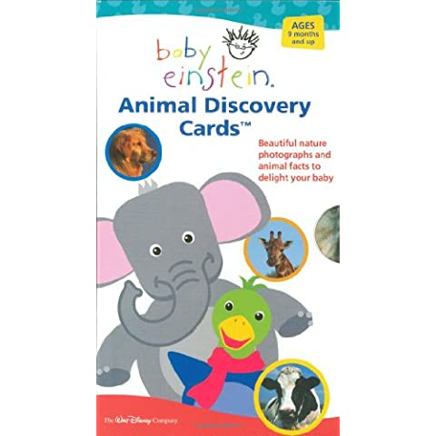 Baby Einstein: Animal Discovery Cards