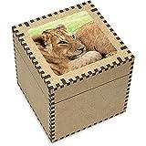 Stamp Press Large 'Lion Cub' Jewellery / Trinket Box (JB00004078)
