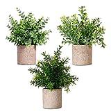 NEWROAD Künstliche Pflanzen Blume 3 Stück Eukalyptus Pickerelweed Babysbreath Simulation Grüne Bonsai für Home Office Hochzeitsdekoration