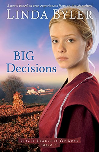 Big Decisions A Novel Based On True Experiences From An Amish Writer Lizzie Searches For Love